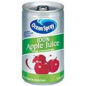 Ocean Spray Apple 100% Juice