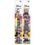 Buckle-Down Large Disney Princess Dog Collar & Leash Set