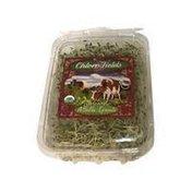 Chlorofields Organic Alfalfa Sprouts