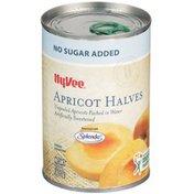 Hy-Vee Sweetened Unpeeled Apricot Halves In Water