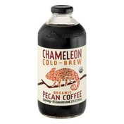 Chameleon Coffee Concentrate Pecan