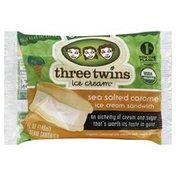 Three Twins Ice Cream Sandwich, Sea Salted Caramel, Organic, Bag