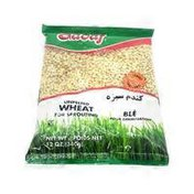 Sadaf Unpelted Wheat For Sprouting