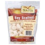 Sea Best Scallops, Bay