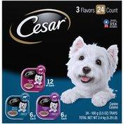 CESAR Flavor Filets in Gravy Dog Food Variety Pack