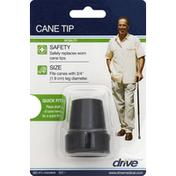Drive Cane Tip