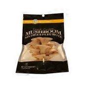 Misty Mountain Dried Oyster Mushroom