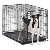 """Midwest Pets 30"""" x 19"""" x 21"""" Black Dog Training Crate"""