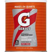 Gatorade Thirst Quencher, Instant Powder Mix, 02 Perform, Fruit Punch