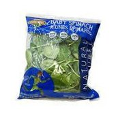 Classic Salads Baby Spinach