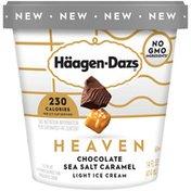 Haagen-Dazs Heaven Chocolate Sea Salt Caramel Light Ice Cream