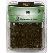 Dion Basil, Organic
