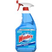 Windex Glass Cleaner, Original