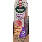 Hormel Natural Choice Uncured Salami & Cheddar Cheese & Crackers