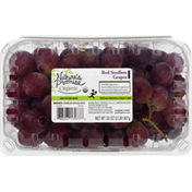 Nature's Promise Grapes, Organic, Red, Seedless