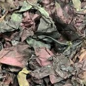 Organic Dulse Leaf