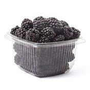 Organic Blackberries Package