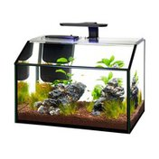 Aqueon 9 Gallon LED Glass Shrimp Aquarium Kit