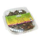 Shakti Life Kitchen Taro Leaf Spirals