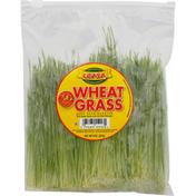 LEASA Wheat Grass