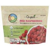 Full Circle Red Raspberries, Unsweetened