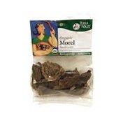 Terra Dolce Organic Morel Mushrooms