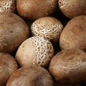 Crimini (Brown) Mushroom Package