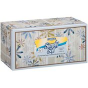 Stater Bros. Markets Simply Soft White 2 Ply Facial Tissues