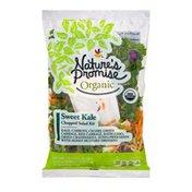 Nature's Promise Organic Chopped Salad Kit Sweet Kale