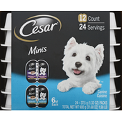 CESAR Canine Cuisine, Grilled Chicken/Slow Cooked Chicken