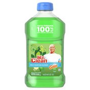 Mr. Clean With Gain Original Scent Multi-Surface Cleaner