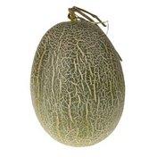 Hami Tuscan Melon