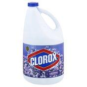 Clorox Bleach, Lavender
