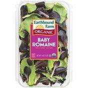 Earthbound Farms Organic Baby Romaine