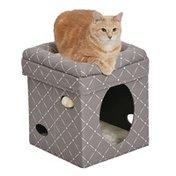 Midwest Curious Mushroom Cat Cube