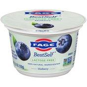 FAGE Lactose Free Blueberry Greek Strained Yogurt
