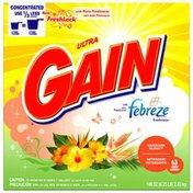 Gain with FreshLock with Febreze Freshness Hawaiian Aloha Powder Detergent