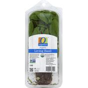 O Organics Basil, Living, Organic