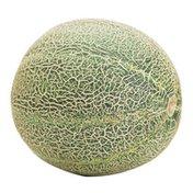 Athena Melon Box