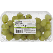 Nature's Promise Green Seedless Grapes