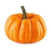 Mini Pumpkin Bag