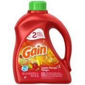 Gain with FreshLock HE Apple Mango Tango Liquid Detergent