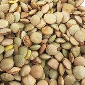 Bulk Beans Organic Green Lentils