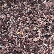 Organic Refried Black Beans