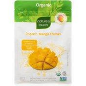 Natures Touch Organic Mango Chunks Nature's Touch Organic Mango Chunks Frozen Fruit