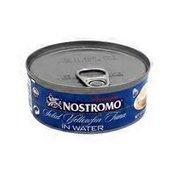 Nostromo Solid Yellowfin Tuna In Water