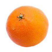 Large Honey Tangerines