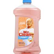 Mr. Clean Multi-Purpose Cleaner, Hawaiian Aloha