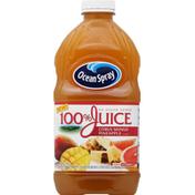 Ocean Spray 100% Juice, No Sugar Added, Citrus Mango Pineapple Flavor