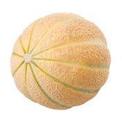 Charentais (French) Melon